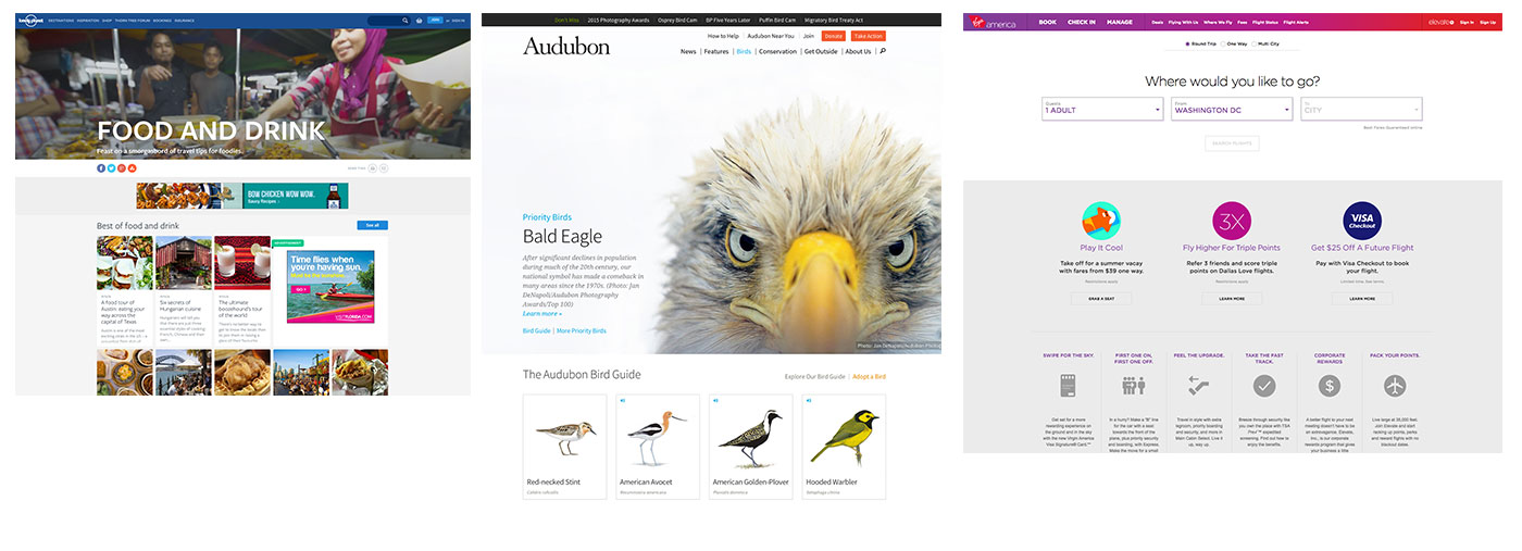 Examples: Lonely Planet, Audubon Society and Virgin America